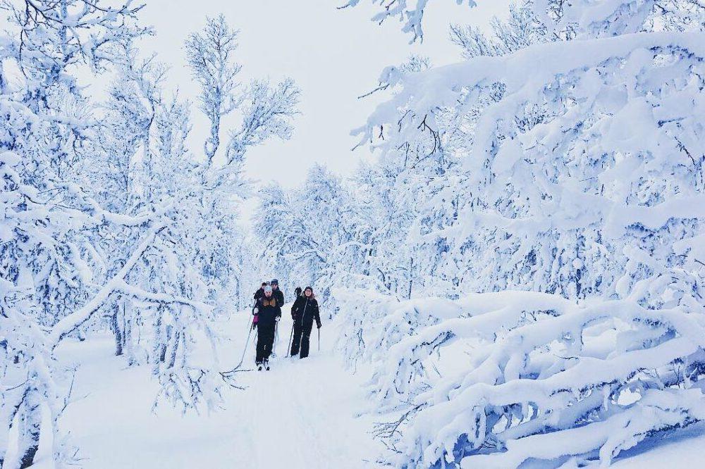 Fjäll och Friluftsliv på skidor